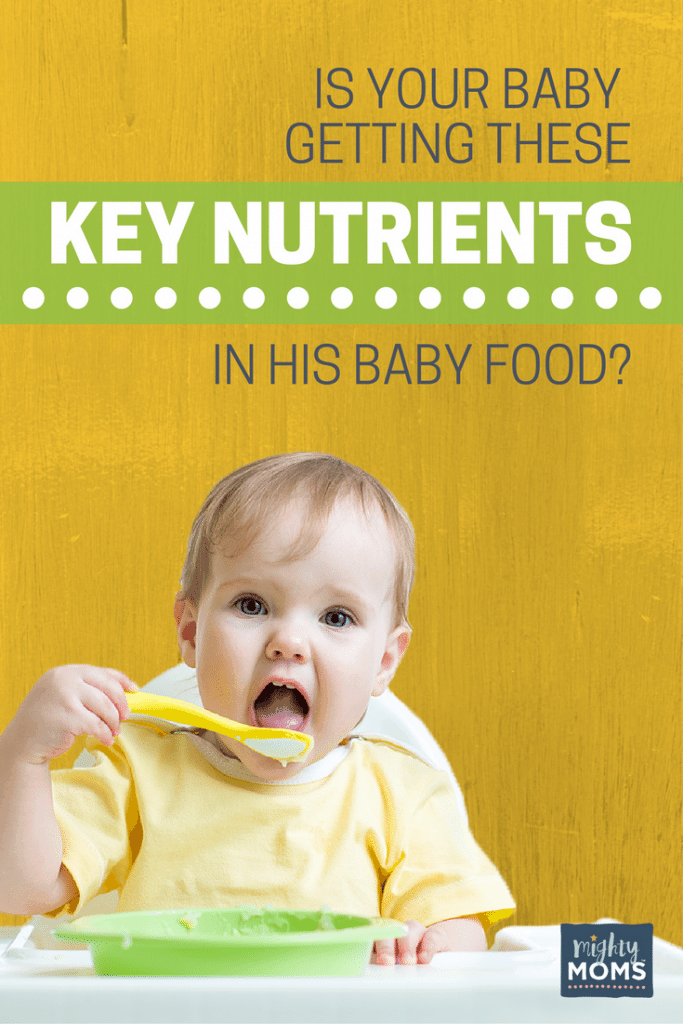 Is Your Baby Getting These Key Nutrients In His Baby Food? ~ MightyMoms.club