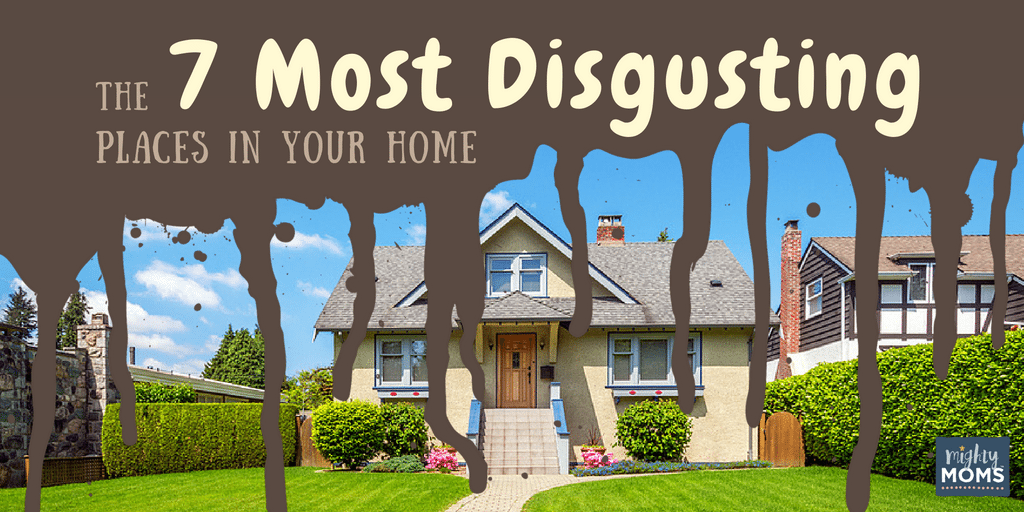 The 7 Most Disgusting Places in Your Home - MightyMoms.club