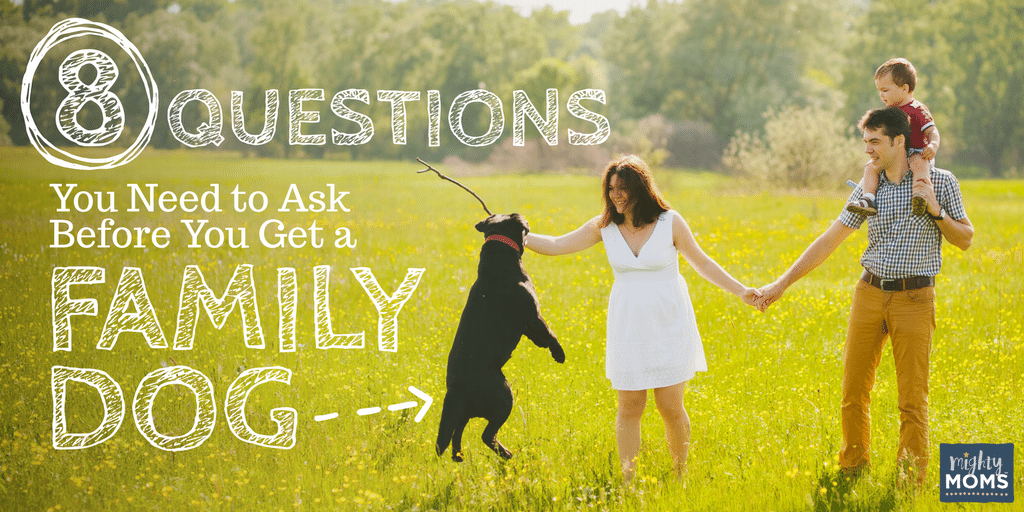 8 Questions You Need to Ask Before You Get a Family Dog - MightyMoms.club