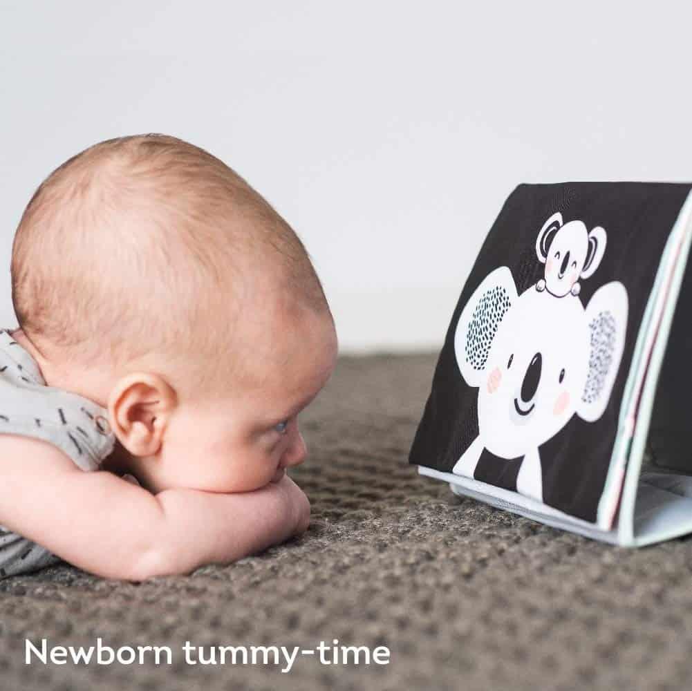 Best Baby Toy - 0-12 Weeks